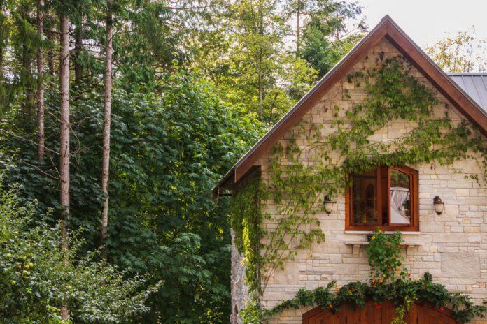 dom przyjazny ekologicznie