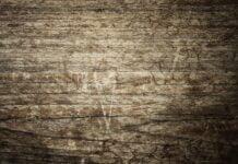 czarne plamy na drewnie