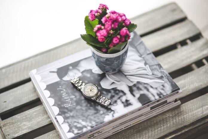 Uprawa i pielęgnacja kalanchoe w ogrodzie - na co zwrócić uwagę?